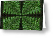 Square Crop Circles Four Greeting Card