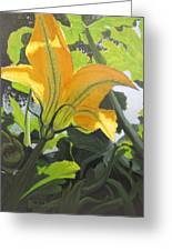 Squash Blossom Greeting Card