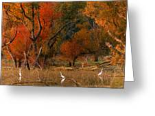 Squaw Creek Egrets Greeting Card