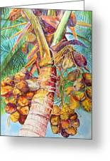 Squire's Coconuts Greeting Card