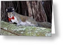 Squirrel Dressed Greeting Card