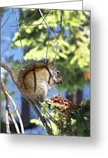 Squirrels Spring Meal Greeting Card