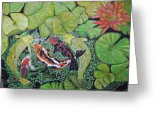 Summer Pond At Lunchtime Greeting Card