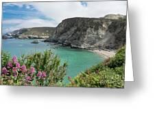 St Agnes Coast Greeting Card