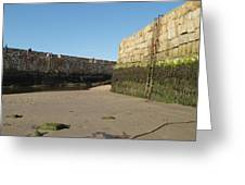 St Andrews Pier At Low Tide Greeting Card