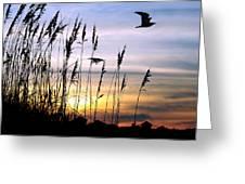 St Augustine Beach Sunset Greeting Card
