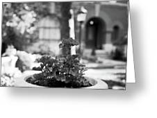 St. James Court 5 Bw Greeting Card