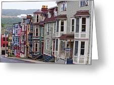 St Johns In Newfoundland Greeting Card