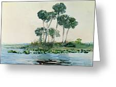 St John's River Florida Greeting Card