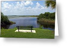 St Johns River In Florida Greeting Card