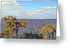St. Johns River Meets The Ocean Greeting Card