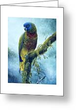 St. Lucia Parrot - Majestic Greeting Card