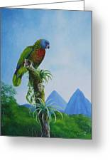 St. Lucia Parrot And Pitons Greeting Card