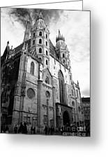 St Stephens Cathedral Vienna In Black And White Greeting Card