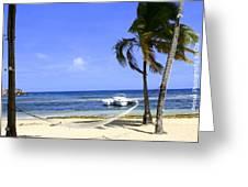 St Thomas Beach Hamocks And Boats Iggys Greeting Card