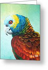 St. Vincent Parrot Greeting Card