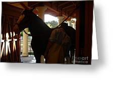 Stable Groom - 2 Greeting Card