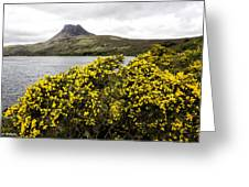 Stac Pollaidh Greeting Card