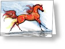 Staceys Arabian Horse Greeting Card