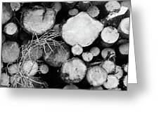 Stacked Wood Logs In Black And White Greeting Card