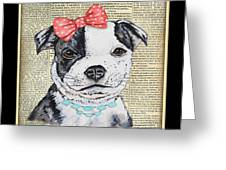 Staffordshire Terrier-jp3857 Greeting Card