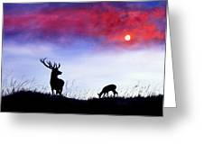 Stag And Deer In Moonlight Greeting Card