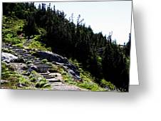 Stairs Along Skyline Trail Greeting Card