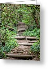 Stairs Going Up Hillside Greeting Card