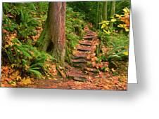 Stairway Forgotten Greeting Card