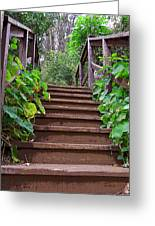 Stairway To Beauty Greeting Card