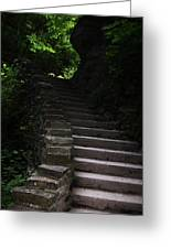 Stairway Watkins Glen 1  Greeting Card