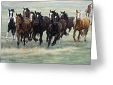 Stampede Greeting Card by JQ Licensing