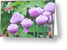 Stand Tall Greeting Card