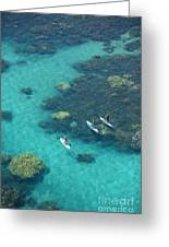 Stand Up Paddlers Greeting Card
