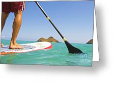 Stand Up Paddling Greeting Card