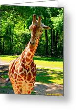 Standing Above The Rest Greeting Card