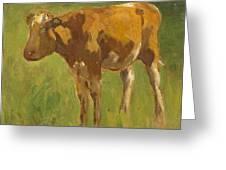 Standing Calf Greeting Card