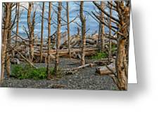 Standing Driftwood Greeting Card