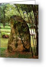 Standing Stone With Fern And Bamboo 19a Greeting Card by Gerry Gantt