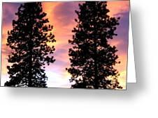 Standing Tall At Sundown Greeting Card