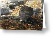 Stanislaus Rocks Spring Greeting Card
