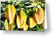Star Apple Fruit On Tree Greeting Card