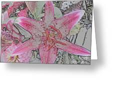 star Flower as Pencil Sketch Greeting Card