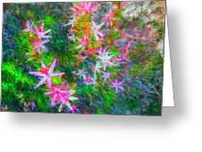 Star Flowers Shine Greeting Card