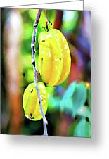 Star Fruit  Greeting Card