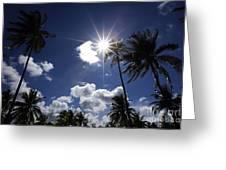 Star In Bintan Greeting Card