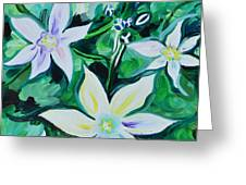 Star Of The Garden Greeting Card
