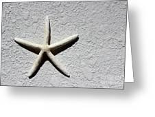 Starfish 2016 Greeting Card