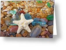 Starfish Art Prints Star Fish Seaglass Sea Glass Greeting Card