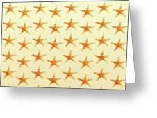 Starfish Pattern. Greeting Card
